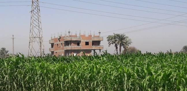 تحرير 3270 محضر تقسيم وبيع أراضي زراعية للبناء عليها بالمنوفية