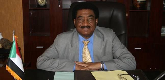 سفير السودان بالقاهرة: هناك محاولة لاستنساخ الربيع العربي في الخرطوم