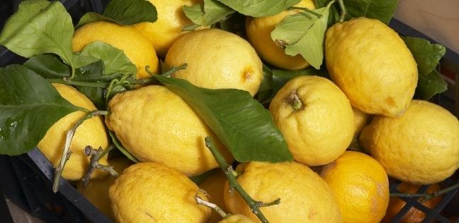 """تاجر: موسم الليمون بين سبتمبر ويناير.. و المتاح منه """"نوار"""