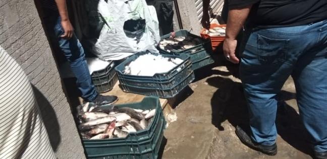 شعبة الأسماك بدمياط: اختفاء بعض الأصناف ونتوقع زيادة الأسعار بسبب النوة - المحافظات -