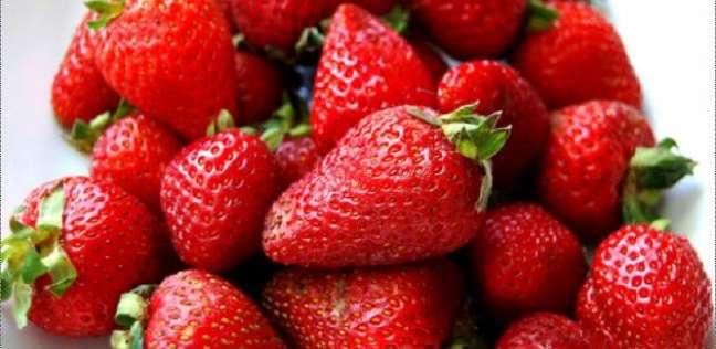 3 ملايين طن حجم صادرات الإسماعيلية من الخضر والفاكهة