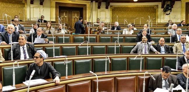 برلمانية: إنشاء وحدة لحقوق الإنسان بكل محافظة سيؤدي إلى حل المشكلات