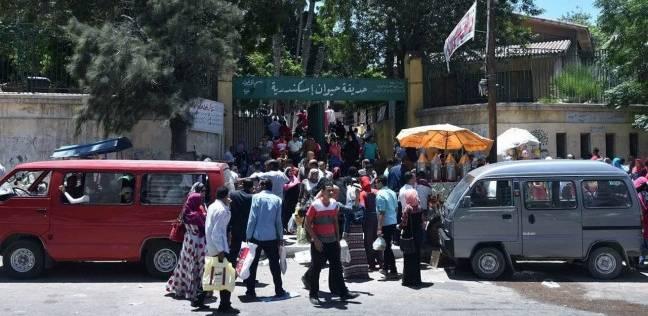 حديقة الحيوان بالجيزة تستقبل 35 ألف زائر في شم النسيم