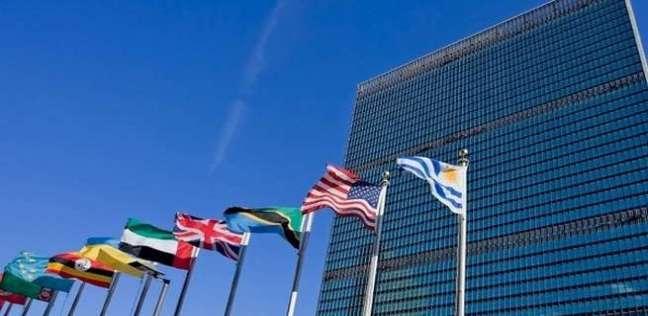 لجنتان في الأمم المتحدة تحضان فرنسا على حماية زوجات إرهابيين في سوريا - العرب والعالم -