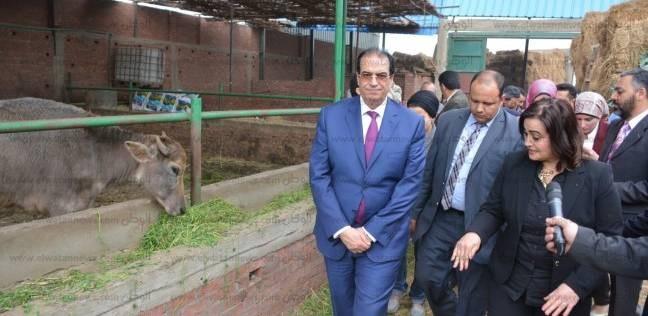 نائب وزير الزراعة: الدقهلية تحتل المركز الثاني في تحصين الماشية