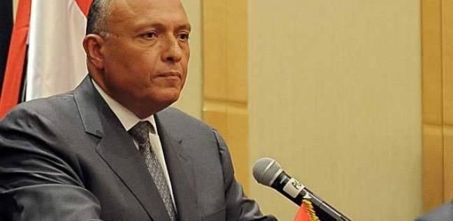 """شكري يبحث مع القيادات السياسية اللبنانية إنهاء """"الفراغ الرئاسي"""" في لبنان"""
