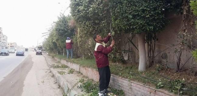 حملة لرفع كفاءة النظافة بمدخل حدائق الأهرام وكفرة نصار