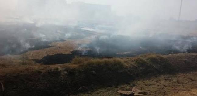 محافظة أسيوط تصدر توصيات للتصدي لظاهرة الحرق المكشوف للمخلفات الزراعية