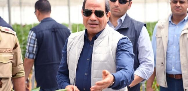 بعد حديث السيسي عنها.. اقتصادي يوضح جهود الدولة لضبط الأسعار بالأسواق - مصر -