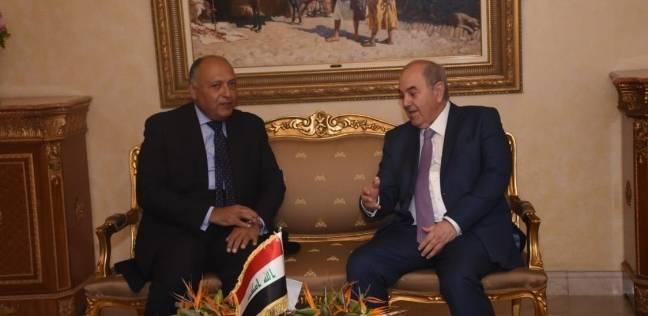 شكري يلتقي نائب الرئيس العراقي ويبحث سبل تطوير العلاقات الثنائية