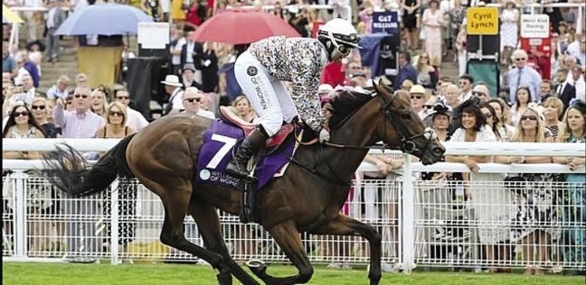 «خديجة» خلال مشاركتها فى سباق للخيول