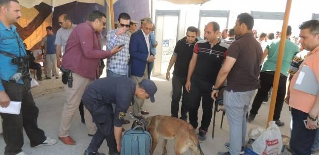 """كلاب بوليسية لفحص الحقائب باحتفالات """"العذراء"""" في المنيا"""
