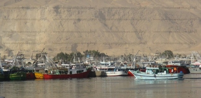 مد فترة الصيد بمياه خليج السويس شهرين