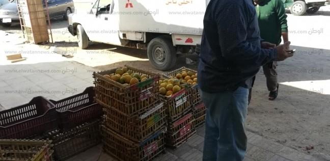فتح منفذ لبيع منتجات مزارع جهاز تعمير سيناء بمدينة رأس سدر