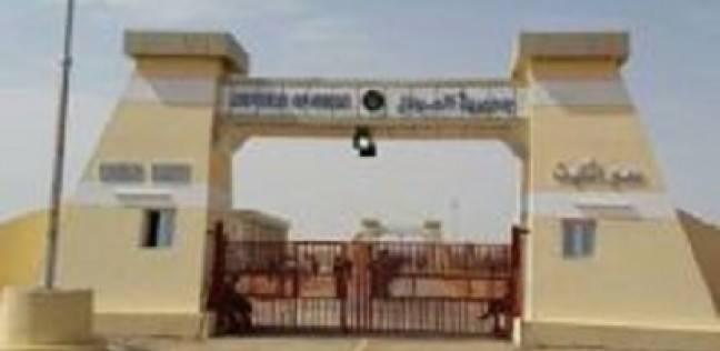 إحباط تهريب أدوية مخدرة وجلود ثعابين بمعبر أرقين بين مصر والسودان