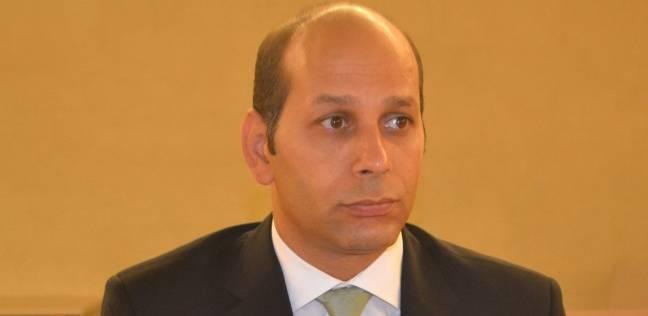 """""""المسكونية لحقوق الإنسان"""": مؤشرات عملية تصويت المصريين في الخارج جيدة"""