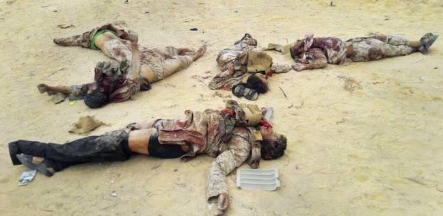 «سكاي نيوز»: مقتل 10 إرهابيين في غارات بالعريش