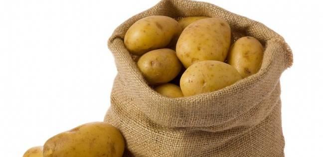 """رئيس """"بيبسيكو مصر"""": خطة لزراعة تقاوي البطاطس في مصر وتصديرها لأفريقيا"""