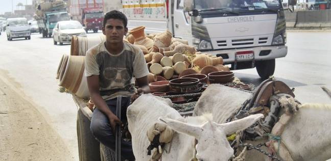 «كارو» على الطريق الدائرى: كله يهون عشان «محمود» يتجوز
