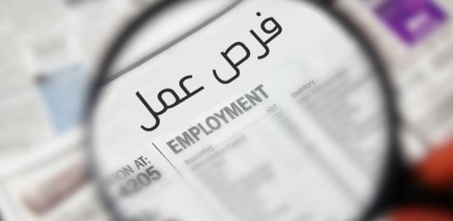 محافظة القليوبية تعلن عن وظائف قيادية شاغرة