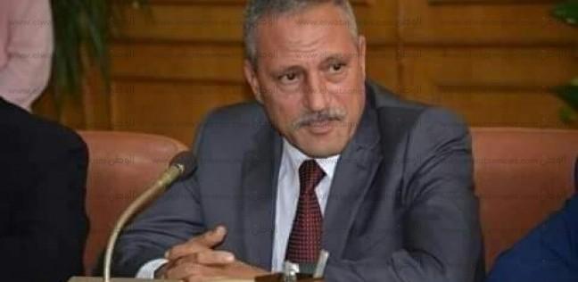 شعراوي يشيد بمشروع موازنة الإسماعيلية للعام المالي 2019 - 2020