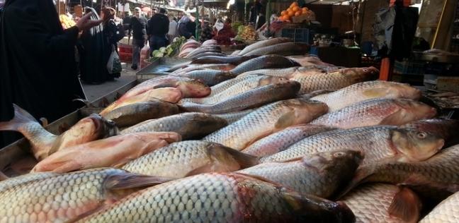 أسعار السمك اليوم الثلاثاء 19-3-2019 في مصر