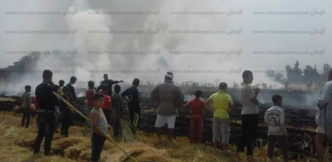تحرير 3 محاضر حرق قش أرز في دمياط