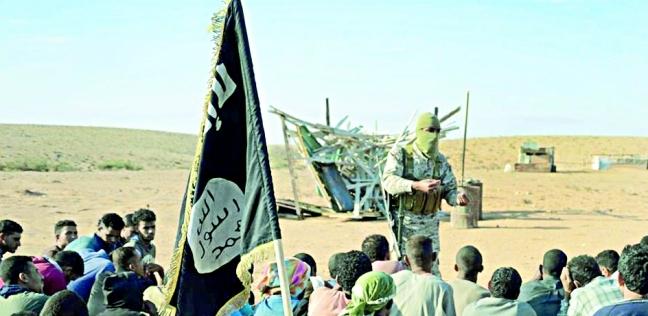 عاجل.. الجيش الفرنسي ينفي ادعاء داعش بإسقاط مروحيتين فرنسيتين بمالي - العرب والعالم -