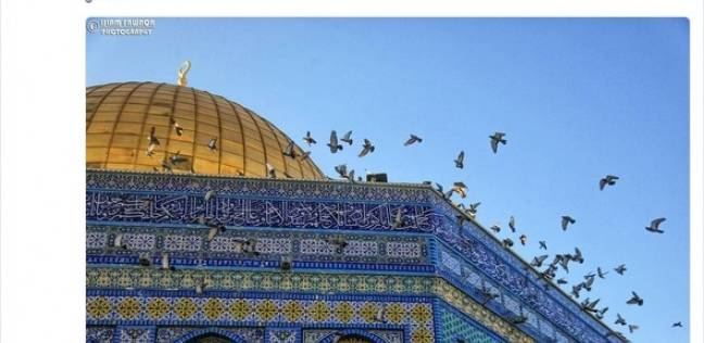 القدس في المنظمات الدولية.. العالم يعترف بانتهاكات إسرائيل المستمرة