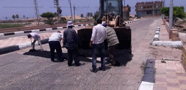 حملات نظافة وصيانة للكهرباء ومكافحة الحشرات بمصيف بلطيم قبل عيد الفطر