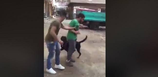 شاب يعذب صديقه بكلب مفترس