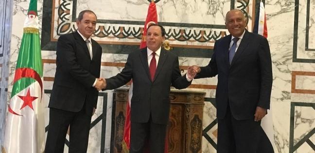 شكري: ندعم الحل السياسي في ليبيا.. ويجب استئناف المفاوضات قريبا