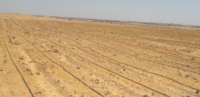 مواعيد تسليم أراضي القرعة الأكثر تميزا والمتميزة بمدينة بدر