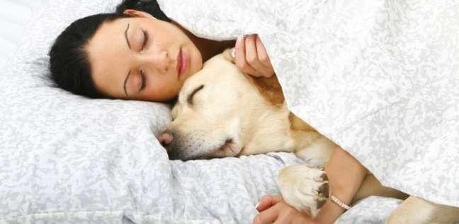 تتسبب في متلازمة القولون العصبي.. تحذير لأصحاب الحيوانات الأليفة