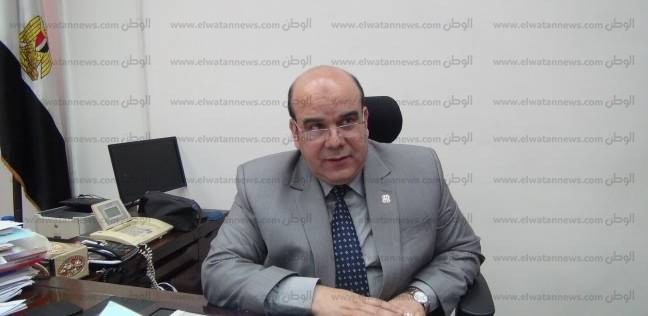 """رئيس """"انتخابات الدقهلية"""": لم ترد أي شكوى من تأخر فتح اللجان بالمحافظة"""
