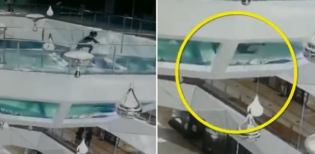 لحظة سقوط المرأة في حوض أسماك القرش