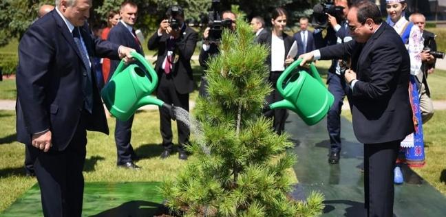 بالصور| الرئيس السيسي يشارك نظيره البيلاروسي زراعة شجرة الصداقة
