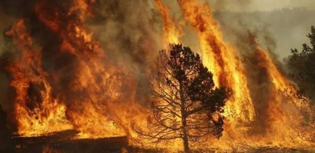 فرق الإطفاء تقترب من السيطرة على حريق غابات قرب منتزه في إسبانيا