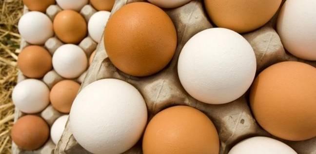 """""""البيطريين"""": استيراد بودرة البيض من الخارج يستنزف العملة الصعبة للبلاد"""
