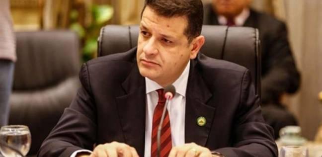 """رضوان: مطالبة البرلمان الأوروبي بإلغاء إعدام قيادات الإخوان """"عيب كبير"""""""