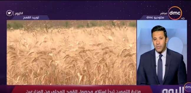 """""""التموين"""": نسعى لتوفير مخزون استراتيجي من القمح يكفي ما بين 3 و6 أشهر"""