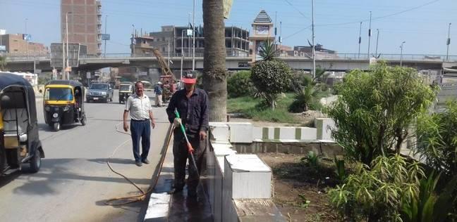 """تجميل الجزيرة الوسطى بشارع جامعة الدول ضمن مبادارة """"من أجل مصر"""""""