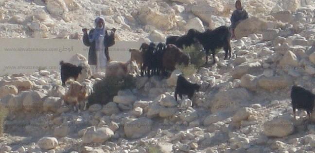 شمال سيناء ترفع درجة الاستعدادات تحسبا لحدوث سيول وعواصف