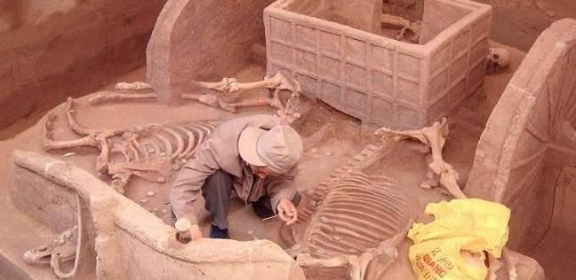 في اكتشاف اثري كبير.. مقبرة بها هياكل خيول وتوابيت في الصين