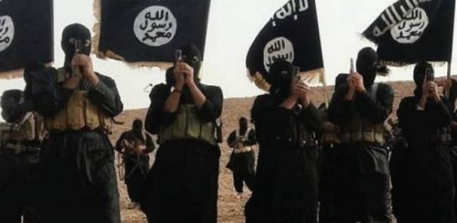 """جيمس جيفري: """"داعش"""" لديها نحو 20 ألف عنصر بالعراق وسوريا"""
