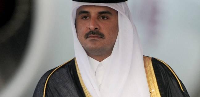 """أحد أفراد الأسرة الحاكمة في قطر: """"تميم"""" يحاول مناطحة مصر والسعودية"""