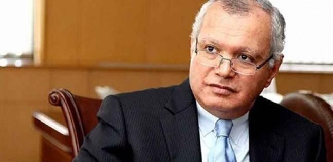 """وزير الخارجية الأسبق: السيسي حدد أمراض المنطقة في """"ميونخ للأمن"""""""