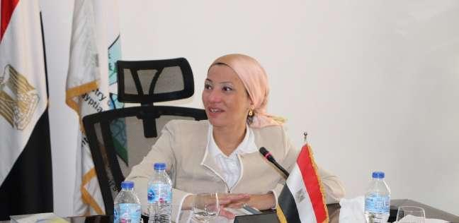 فؤاد: مصر تسعى للتعاون مع الدول الإفريقية لصون الموارد الطبيعية