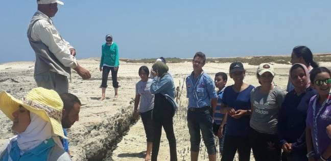 وزيرة البيئة: تنفيذ معسكر كشفي بيئي بالبحر الأحمر
