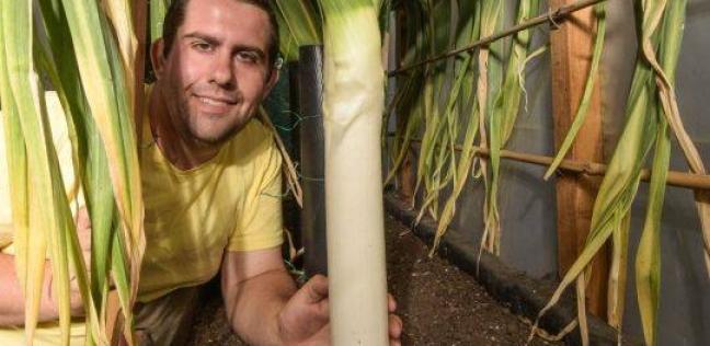 بالفيديو  مزارع يبتكر طريقة جديدة لنمو الخضروات